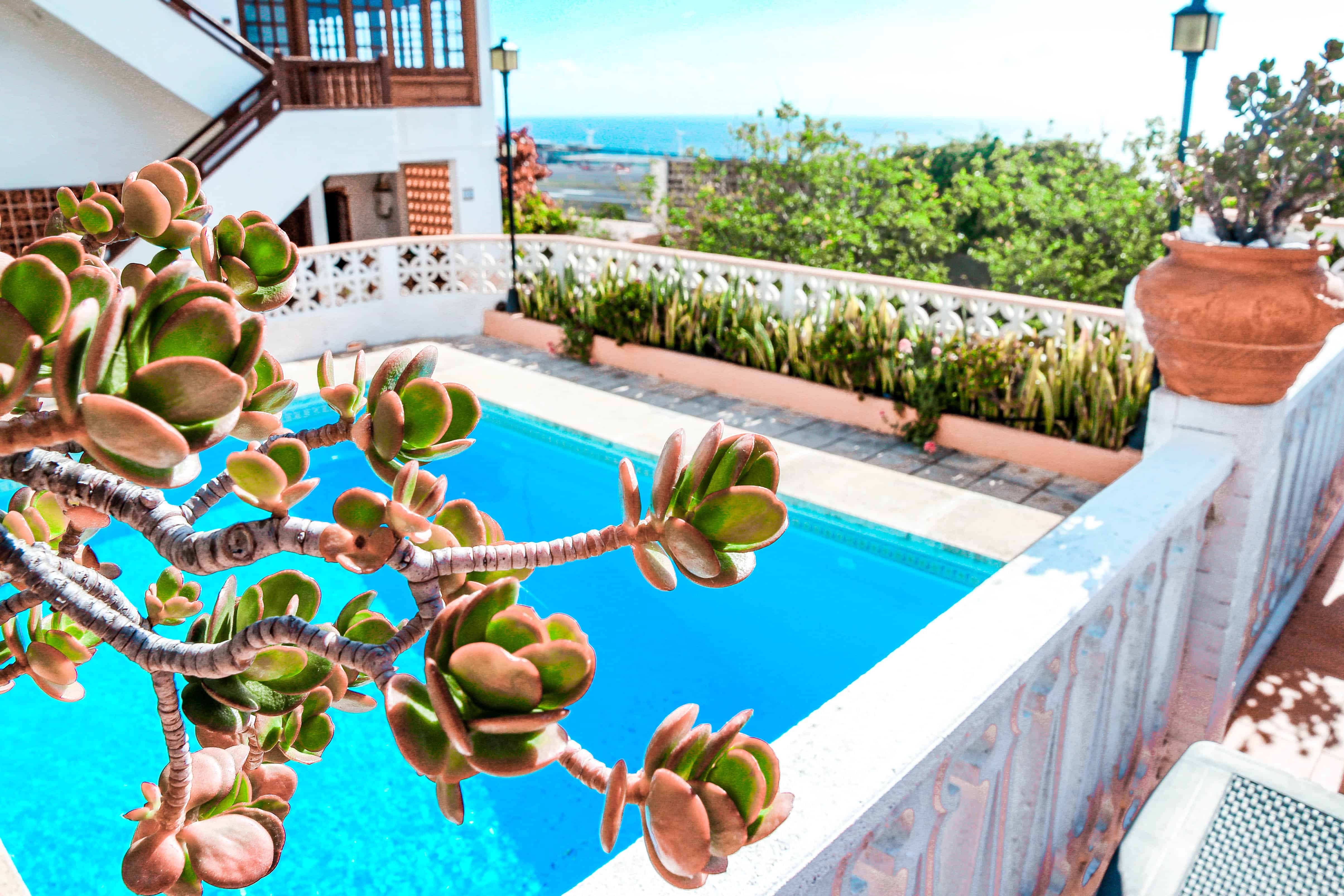 Read more about the article Paradise Home in La Palma