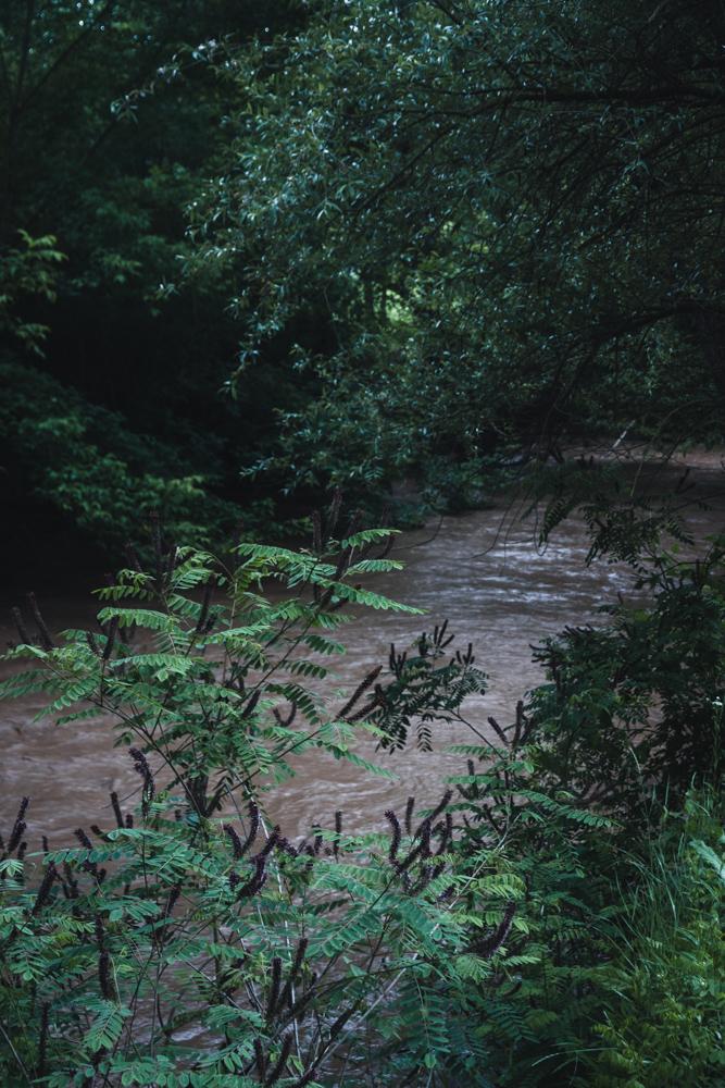 Rusenski Lom River near Cherven